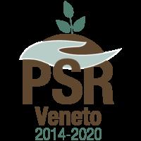 4_00-Es-Logo-PSR