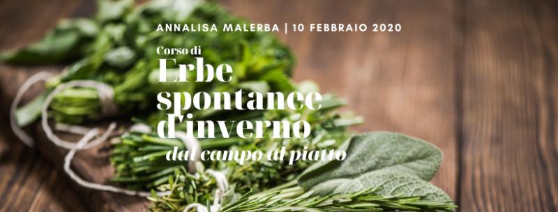 Erbe spontanee d'inverno Dal campo al piatto con Annalisa Malerba