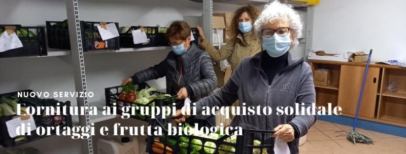 fornitura ai gruppi di acquisto solidale di ortaggi e frutta biologica